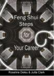 Feng Shui Steps for your Career